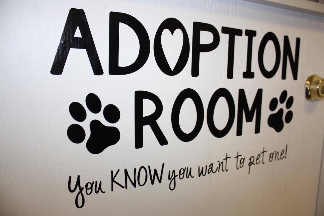 Adoption Room