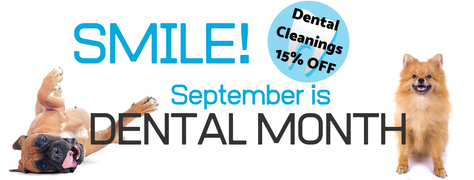 September dental month